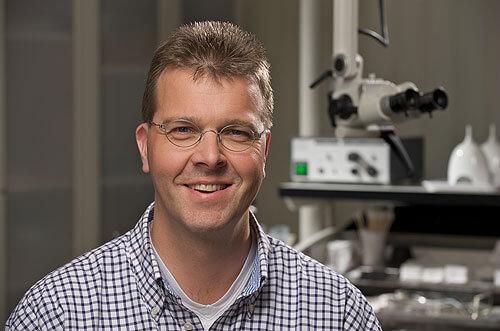 Foto von Prof. Dr. med. Stefan Gottschlich